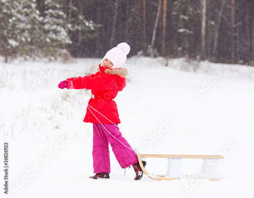 girl with the sledge