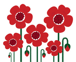 Red Poppy flowers isolated on white, retro..