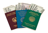 Foreign Passports and US dollars over white poster