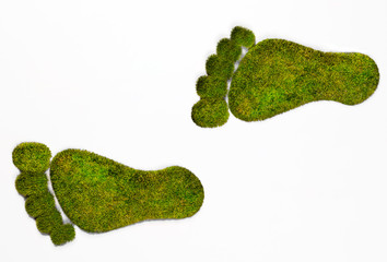 Eco footprints illustrating the human footprint on nature