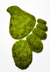 Eco footprint illustrating the human footprint on nature