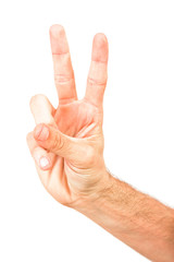 hand forming sign  - gesture, sign - victory