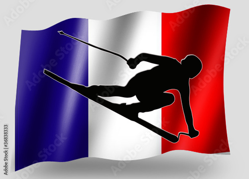 Country Flag Sport Icon Silhouette French Ski