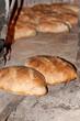 Hogazas de pan tostado recien salido del horno