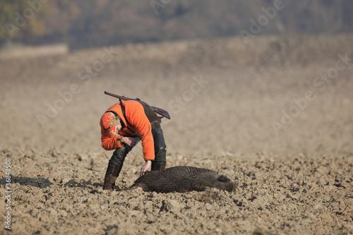 erfolgreiche Jagd auf Schwarzwild - 36848508