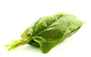 Spinach isolated on white