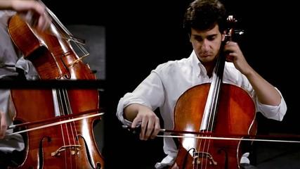 musicista, violoncellista