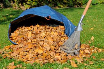 Blätter zusammenfegen