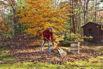 Senior raking autumn leaves