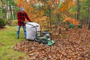 Senior vacuuming autumn leaves