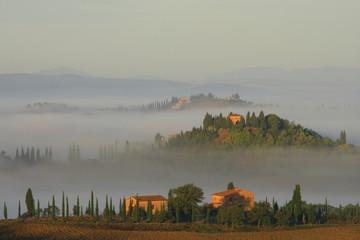 Podere, Bauernhaus,Zypressen,Morgennebel,Toskana,Italien