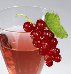 Redcurrant and glass
