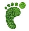 Fußabdruck Rasen