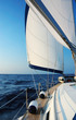 Sailing with wind - 36885515