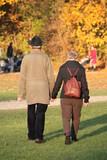 Goldener Herbst, goldene Jahre: altes Paar Hand in Hand poster