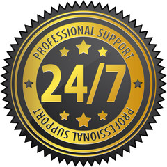 24/7 professional support