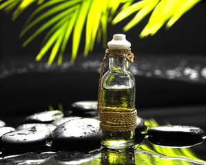 bottle of essential oil and green palm leaf with stones
