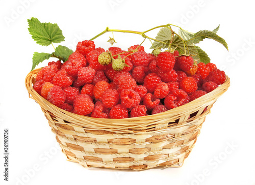 Ripe raspberry lies in a basket