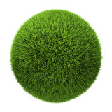 Fototapety Grass Ball