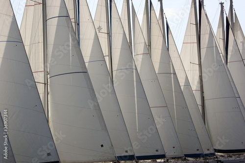 Yacht Sails © William Richardson