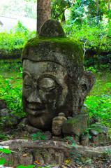 Buddha image head