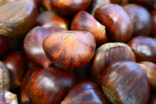 Heap of sweet chestnuts