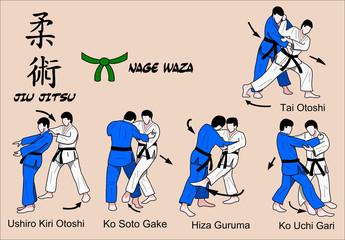 Jiu Jitsu Nage Waza 3 Color