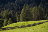 Fototapeta pastwisko - pole - Góry