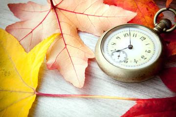 orologio da tasca con foglie
