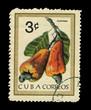 CUBA, shows Maranon,  circa 1978