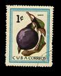CUBA, shows Caimito,  circa 1970