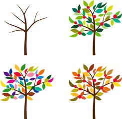 un árbol y las cuatro estaciones