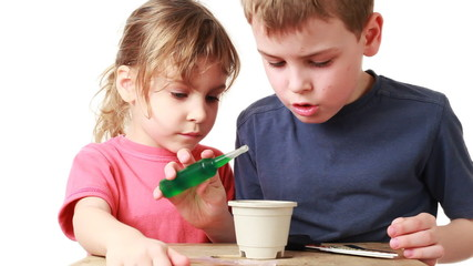 boy and girl watered plants seeds of nutrient solution in pot