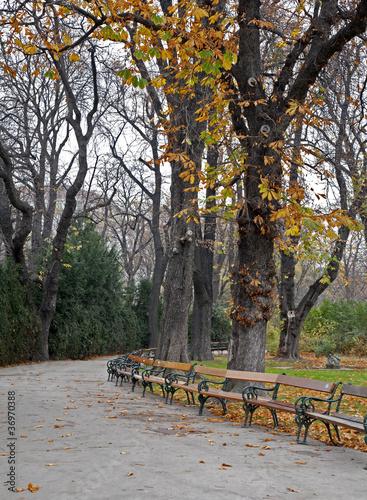 Vienna - Stadtpark in autumn