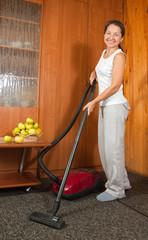 housekeeper.