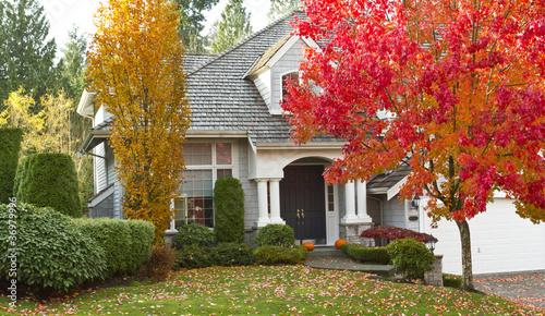 Residential Home during Fall Season - 36979996