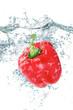 peperone rosso splash