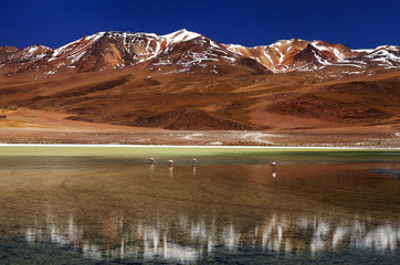 Bolivia, the most beautifull Andes in South America