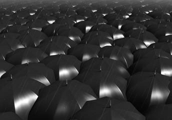 paraguas negros en la lluvia