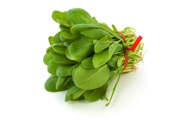 Bunch of fresh baby spinach