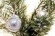 boule de Noël argentée sur un fond de sapin vert