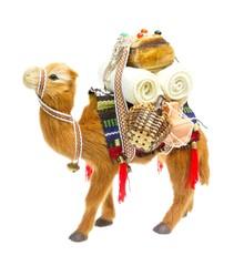 1001 Nacht - Kamel freigestellt