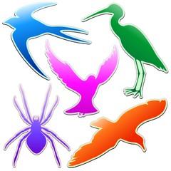 Animali Astratti Logo Colori-Animals Stickers Abstract Colors-3