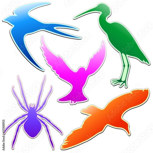 Poster Geometrische dieren Animali Astratti Logo Colori-Animals Stickers Abstract Colors-3