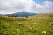 Beautiful mountain - Italian alps - Monte Cimone Valle Camonica