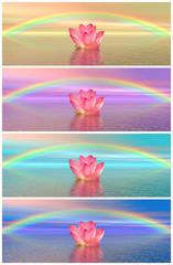 Lily flowers under rainbow