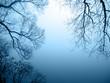 Seeufer im Nebel Querformat - 37040945