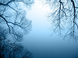Fototapety Seeufer im Nebel Querformat