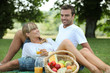 Couple enjoying picnic - 37052547