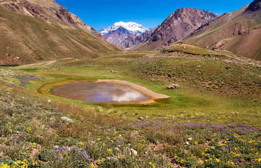 Nature landscape with Aconcagua in Argentina, South America